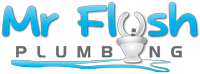 Mr Flush Plumbing Pty Ltd