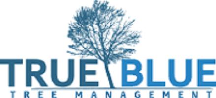 True Blue Trees