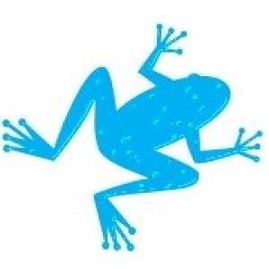Blue Frog Services