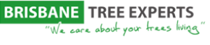 Brisbane Tree Experts